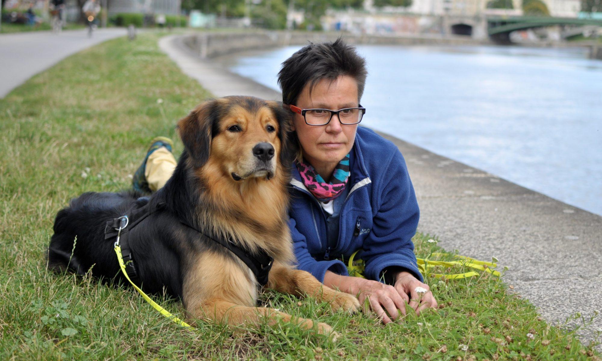 meDOGs - professionelles Coaching für Mensch&Hund